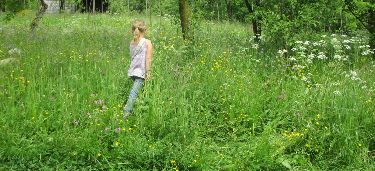 Sustainable Steps – Earthen yourself