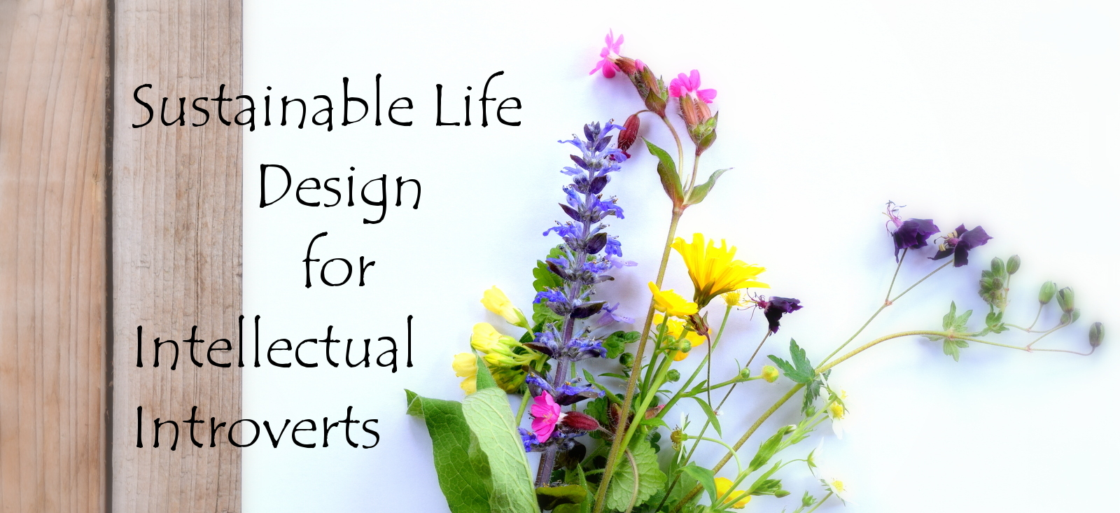 Sustainable Life Design for Intellectual Introverts