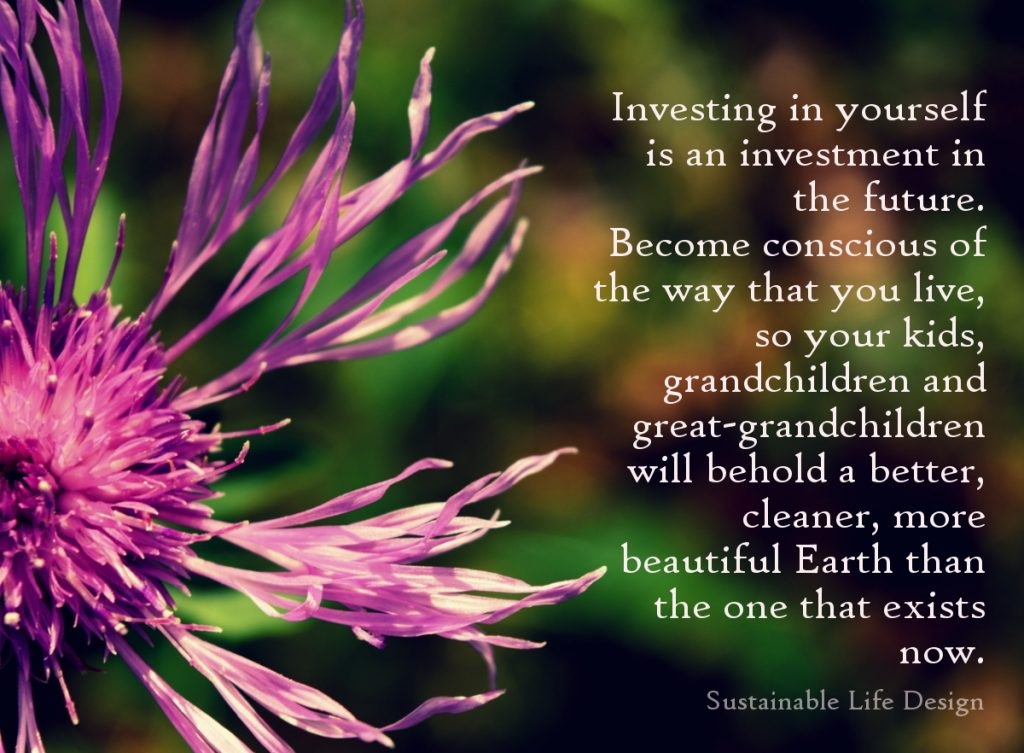 Invest in yourself - invest in your future. Sustainable Life Design