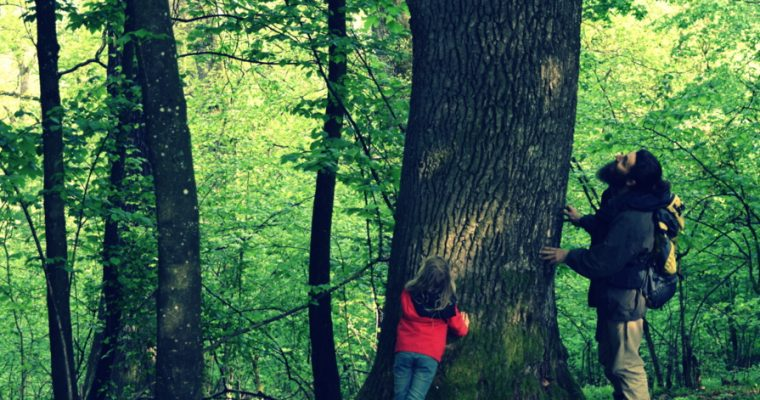 5 lessons kids can learn from eco-minimalism