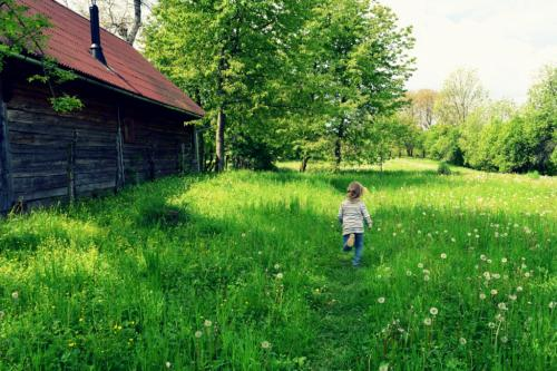 kids in nature screen-free time